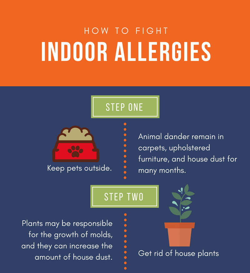 14 Ways to Make an Allergy Free Home (Infographic)