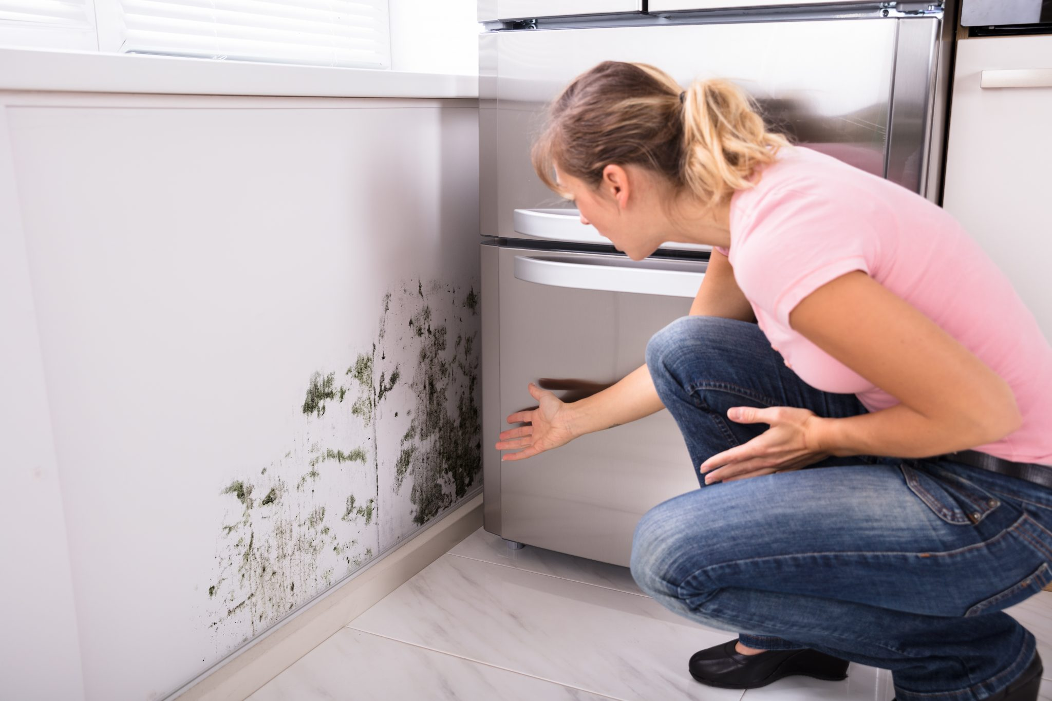 14 Ways To Prevent and Reduce Mold Allergies In Your Home